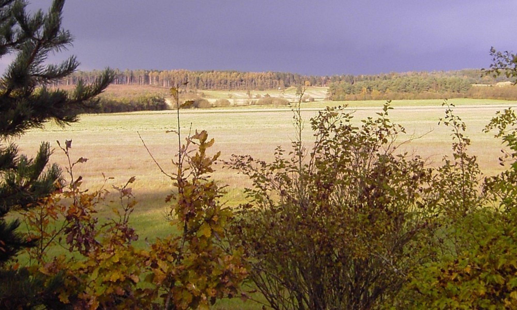Skovhøj Agro